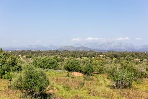 Herrlicher Panoramablick auf die Sierra de Tramuntana