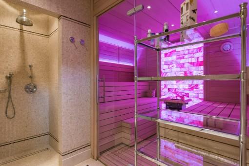 Die Villa bietet einen SPA Bereich und eine Sauna
