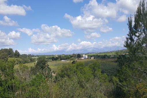 Panoramablick in die Natur