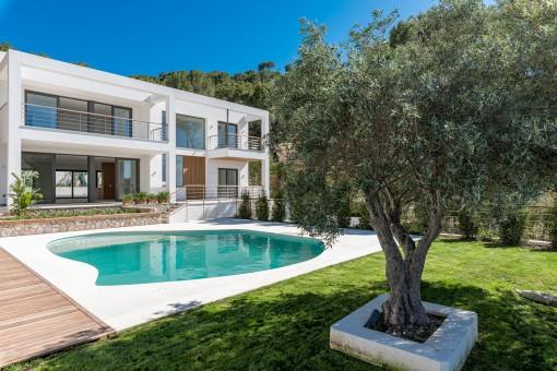 Mediterraner Außenbereich mit Olivenbäumen