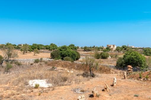 Die Finca steht auf einem 16.866 qm Grundstück