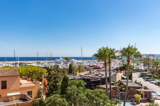 Blick über einen der bekanntesten Häfen Mallorcas