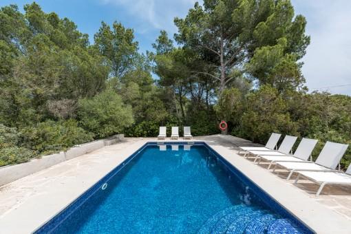 Der Poolbereich wird von Pflanzen und Bäumen umgeben