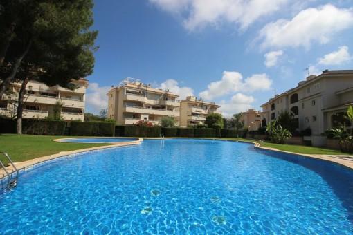 Sonnige Apartment in der Nähe von Palma