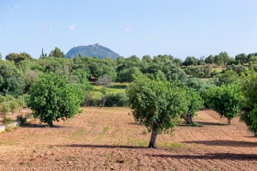 Mediterranes Grundstück mit atemberaubenden Panoramablick