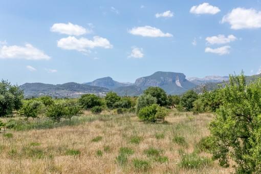 Die Finca bietet einen traumhaften Landschaftsblick