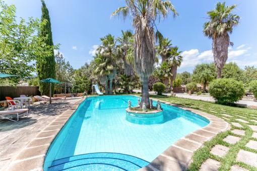 Großer Poolbereich mit Palmen