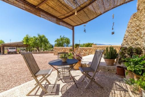 Überdachte Terrasse mit mediterranen Pflanzen