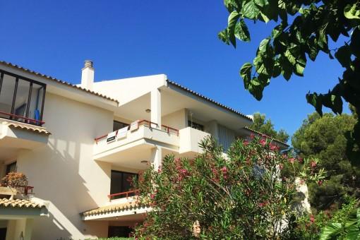 Renovierungsbedürfte, großzügige Wohnung in Puerto Pollenca, nur 500 Meter vom Strand entfernt