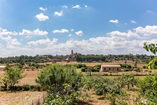 Altes mallorquinisches Landhaus zum Renovieren / Sanieren mit schönem Grundstück in Biniagual