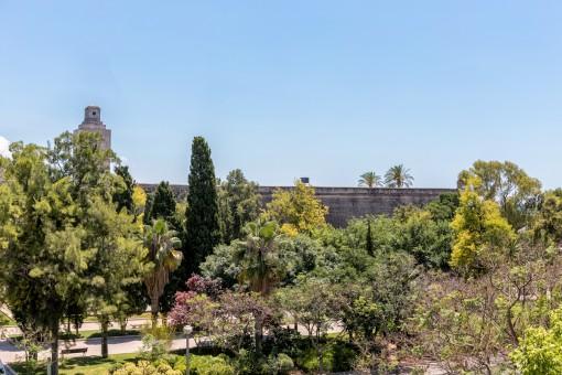 Fantastischer Blick zur Stadtmauer und dem Park nebenan