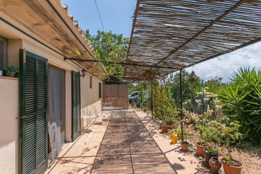 Charmante Terrasse mit Pflanzen