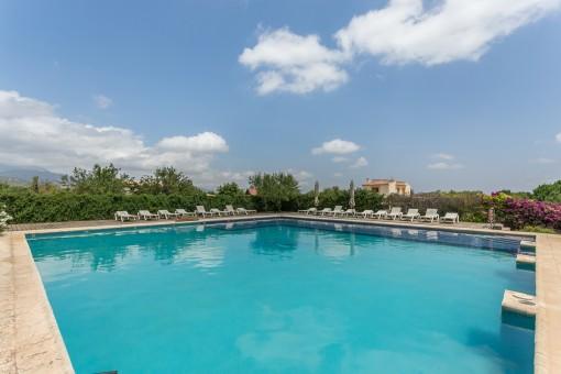 Sehr großer Pool mit Terrasse