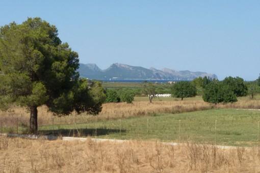 Großes Grundstück mit Fernmeerblick bei Alcudia mit Basisprojekt