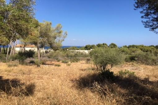 Großes Grundstück mit Meerblick und schöner Lage in Sol de Mallorca