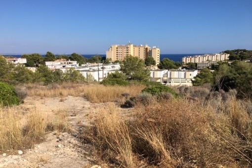 Großes Baugrundstück mit Meerblick in Cala Vinyas