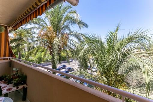 Schönes und geräumiges Apartment in Strand- und Zentrumsnähe in Alcudia