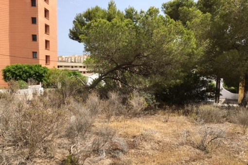 Großes Grundstück, ideal für ein Einfamilienhaus in Cala Vinyes