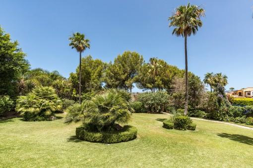 Großer, grüner Garten