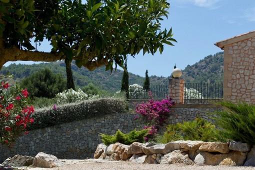 Schöner, mediterraner Garten