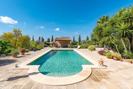 Perfekter Swimmingpool