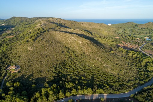 Baugrundstück mit Meerblick in Canyamel