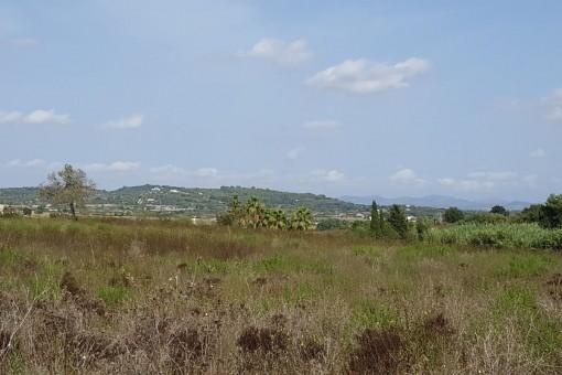Grundstück in Porreres mit schönem Weitblick bis ins Tramutana-Gebirge