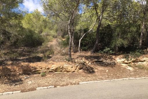 Eine großartige Investitionsmöglichkeit - ein großes, nach Nordwesten ausgerichtetes Grundstück zum Bau eines Hauses in Cala Vinyes