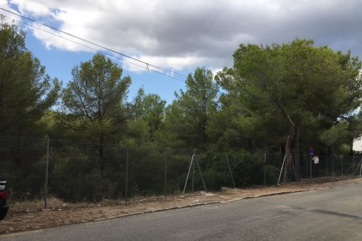 Großes, nach Nordwesten ausgerichtetes Grundstück zum Bau eines Familienhauses in Cala Vinyas