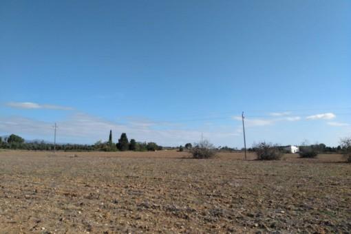 Das Grundstück ist 114.000 qm groß