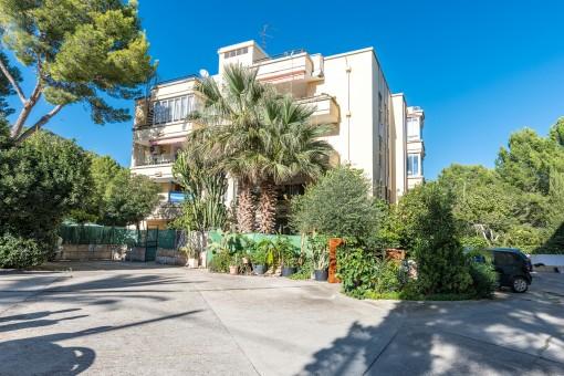 Wohnung mit 2 Gewerbelokalen und Lagerräumen zum Spitzenpreis in Paguera