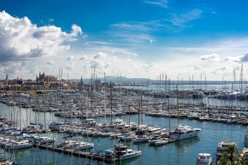 Herrlicher Ausblick auf den Hafen und die Kathedrale