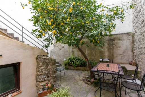 Charmanter Innenhof mit Zitronenbaum