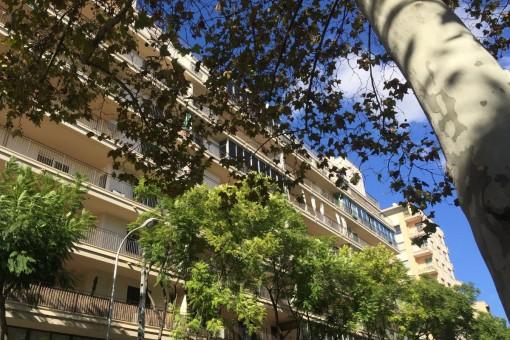 Geräumige, möblierte Wohnung mit großem Balkon nahe Santa Catalina