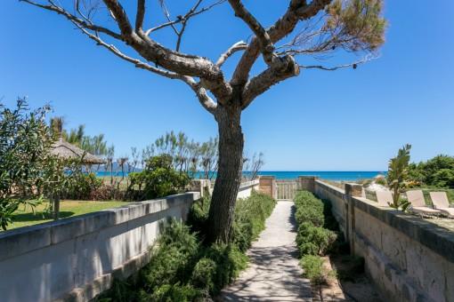 Exklusive Vermarktung Meerblick-Apartment an der Playa de Muro in erster Meereslinie mit direktem Strandzugang ab sofort frei