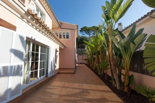 Weitere Terrasse mit Palmen