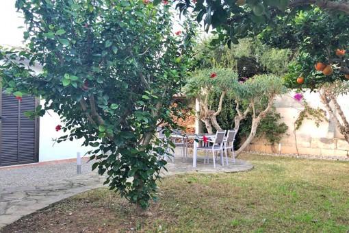 Der Garten verfügt über einige Obstbäume