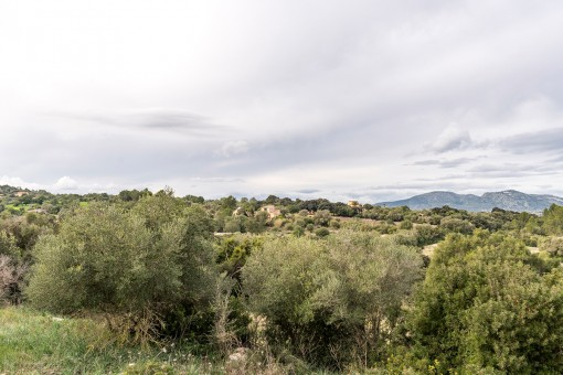 Blick auf die umgebende Landschaft