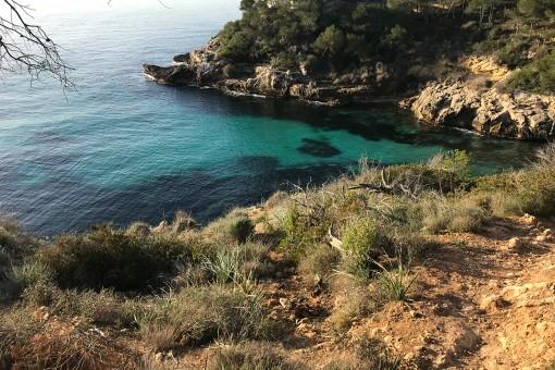 Bucht von Cala Vinyes