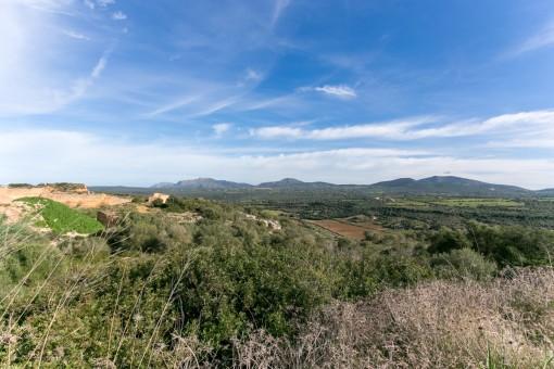 Außergewöhnliches Grundstück mit den Bergen von Artà und dem Albufera-Naturpark als Kulisse