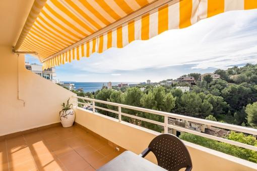 Wundervoller, sonniger Balkon
