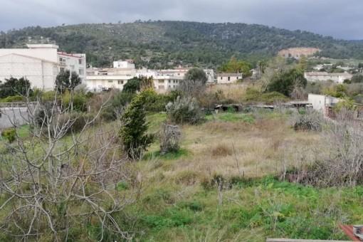 Grundstück in Lloseta in guter Lage und Bebauungsmöglichkeit für ein Mehrfamilienhaus