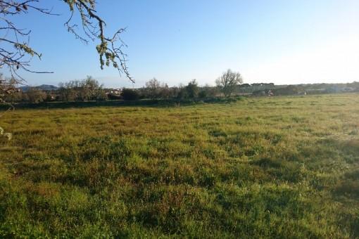 Großes Traumgrundstück mit Panoramablick auf Santanyi und begonnenem Bauprojekt