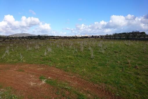 Traumgrundstück in Santanyi mit Weitblick und vorhandenem Bauprojekt