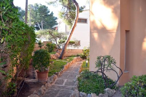 Umgebung und Garten