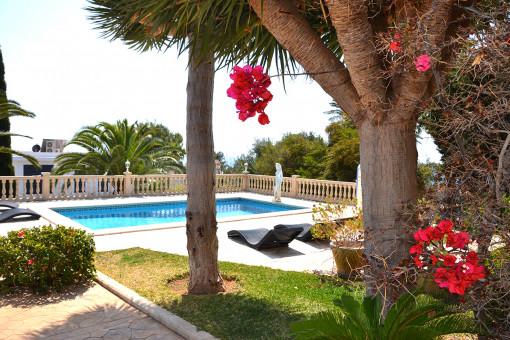 Wunderschöner Garten- und Poolbereich