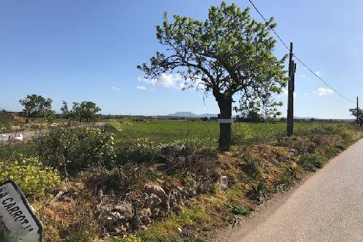 Ansicht des Grundstückes