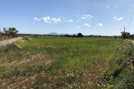 Großzügiges Grundstück inklusive Basisprojekt in Campos