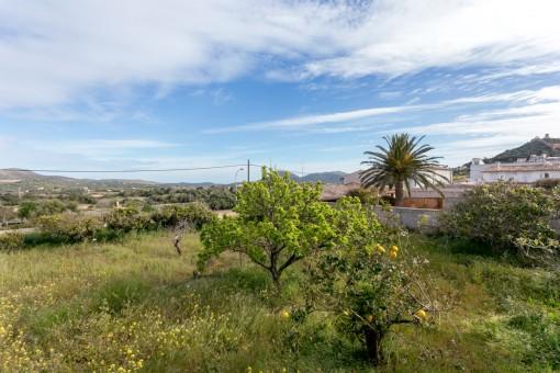 Ansicht des idyllischen Grundstückes