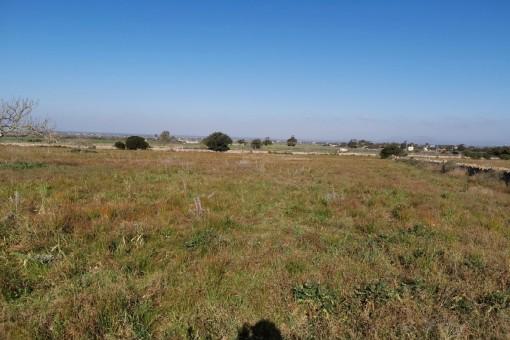 Zentral gelegenes Baugrundstück mit Panoramablick in Campos